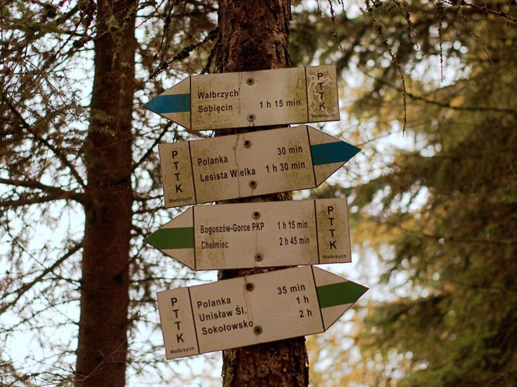 planowanie wyjazdu z psem w góry