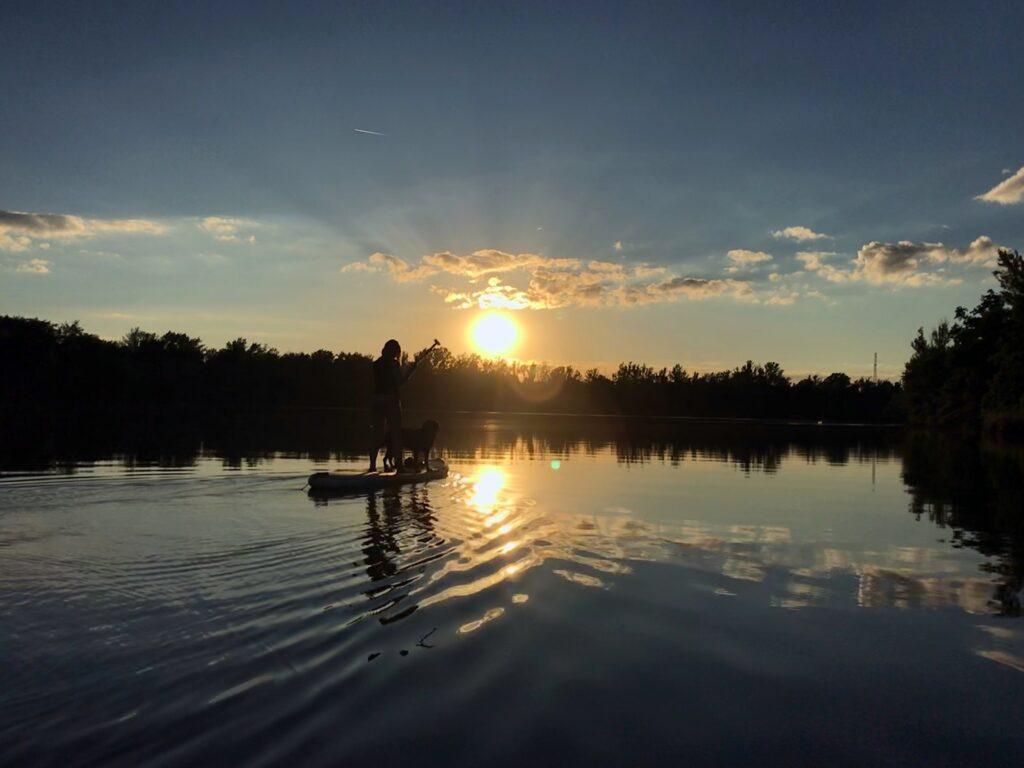 duży PIes SUP zachód słońca