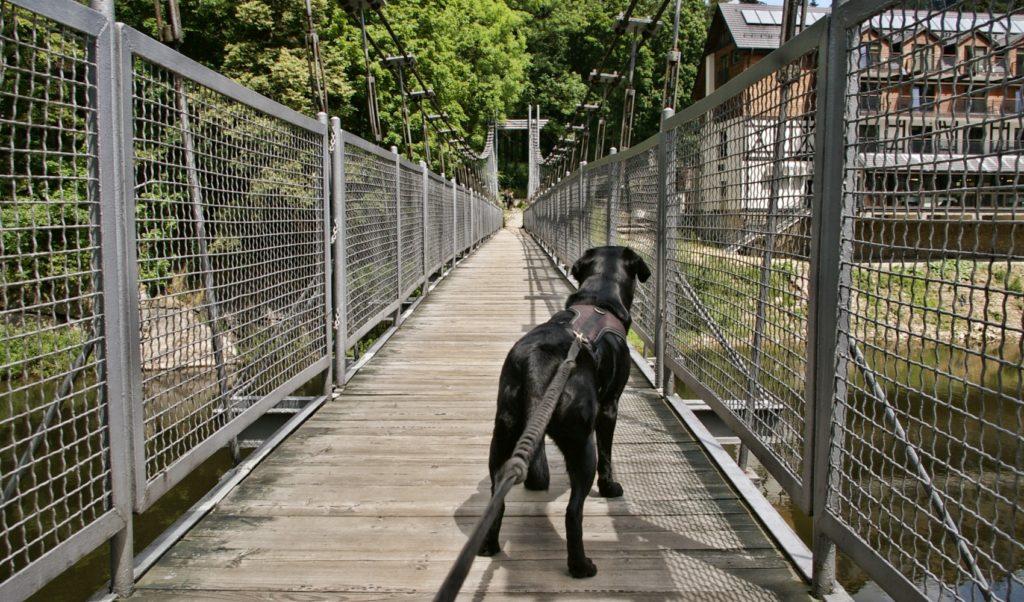 Jussi i most zwodzony na jeziorze Lubachowskim